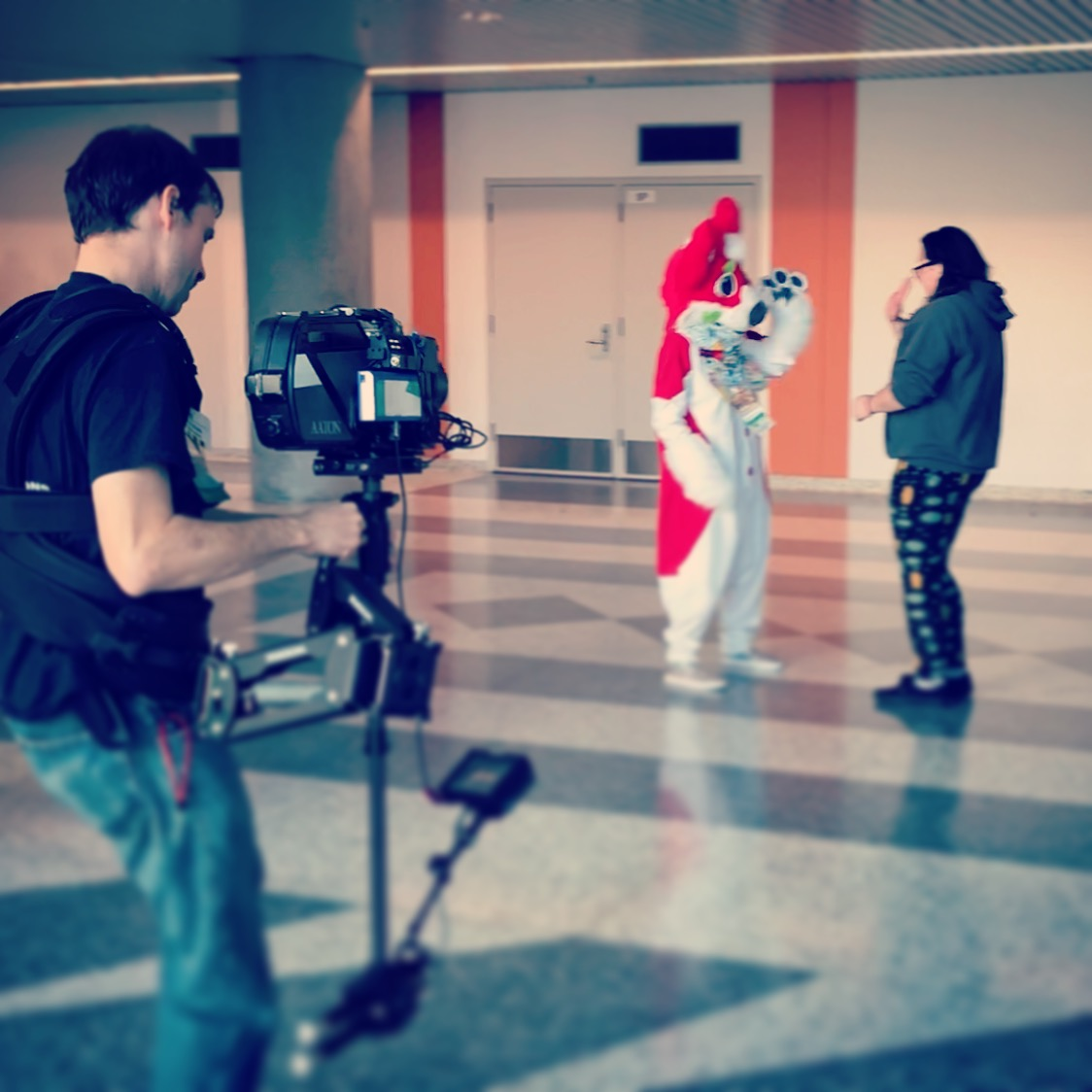 aaton_35III_tye_steadicam_withfurries.JP